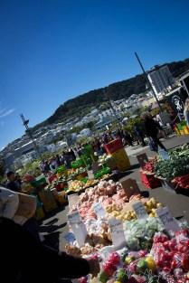 Sunday Harbourside Market, Mt Victoria in the backdrop