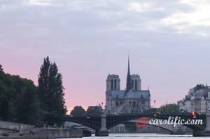 Paris, Travel, France, River Cruise, Seine Cruise, Eiffel Tower, Notre Dame, City Cruise, Lafayette, Paris Shopping,