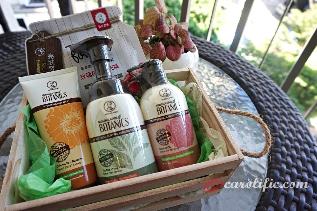 Mentholatum, Botanics, Skincare, Beauty, Japanese, Tea Tree, Rose, Jasmine, Foam Cleanser, Cream Cleanser, Hydrating, For Oily Skin, For Dry Skin,