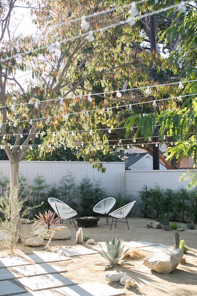 amp_backyard-5