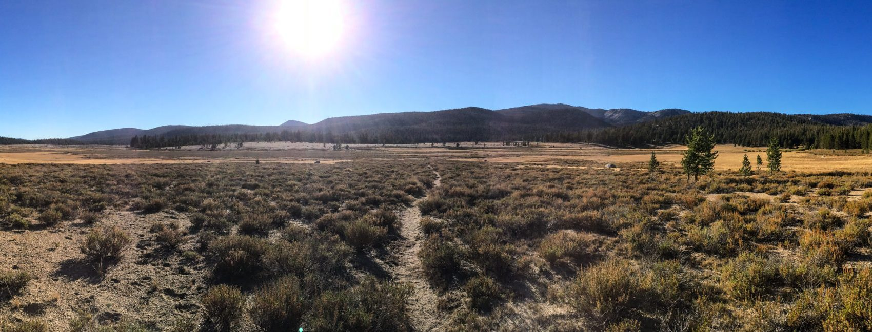 Empty Trail