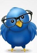 arquitecto twitter