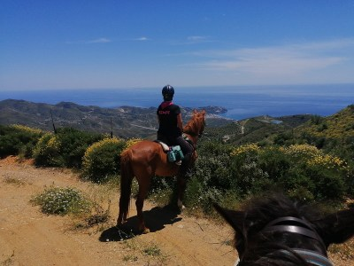 Horse Riding in Andalusia Riding in the beautiful scenery of the Costa Tropical with fantastic views! We offer trail rides, riding lessons for adults and children, pony club activities and equine life coaching.  We have very well behaved horses.