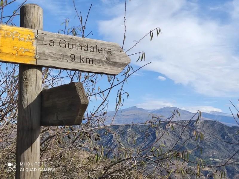Itrabo 'La Guindalera Castano de Jurite -Rachel Adams photo Read more on Almunecarinfo.com