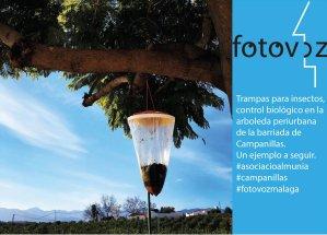 FotovozCampanillas2