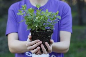 Fademur: cultivando igualdad
