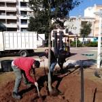 La reparació de goteres i la plantació d'arbres, accions destacades aquesta setmana del manteniment ...