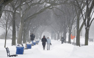 People walk under trees during a winter storm in Washington