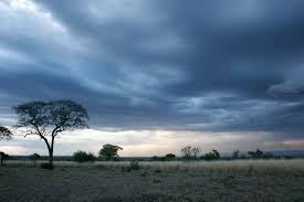 حالة الطقس اليوم رياح محملة بالأتربة وسقوط سيول