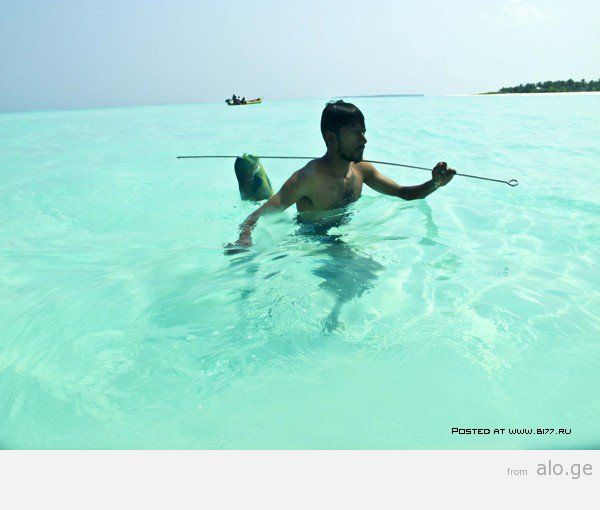 1365282133_maldives-2014-b177.ru-2