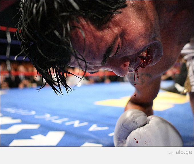 boxer_faces_07