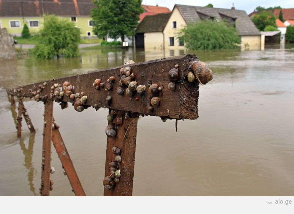 flooding30