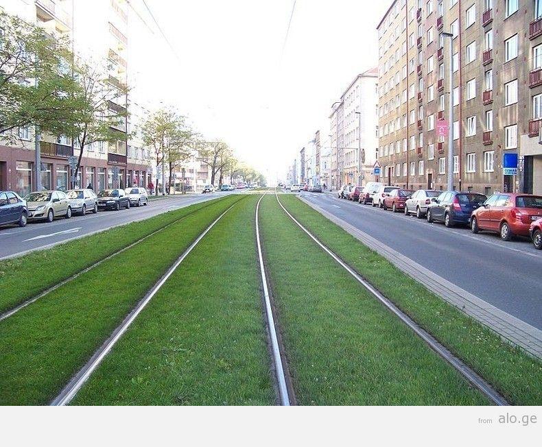 greentramway01