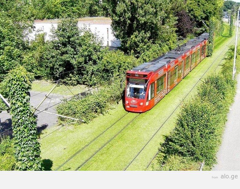 greentramway05