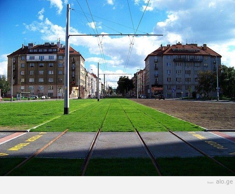 greentramway06