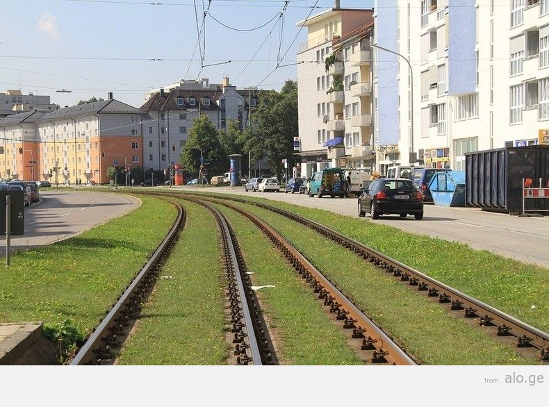 greentramway10
