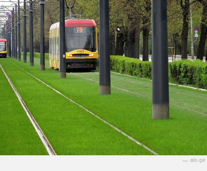 greentramway14