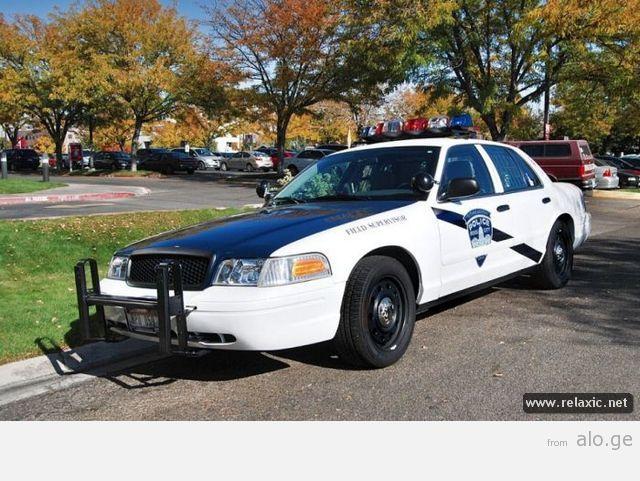 police-car_00121
