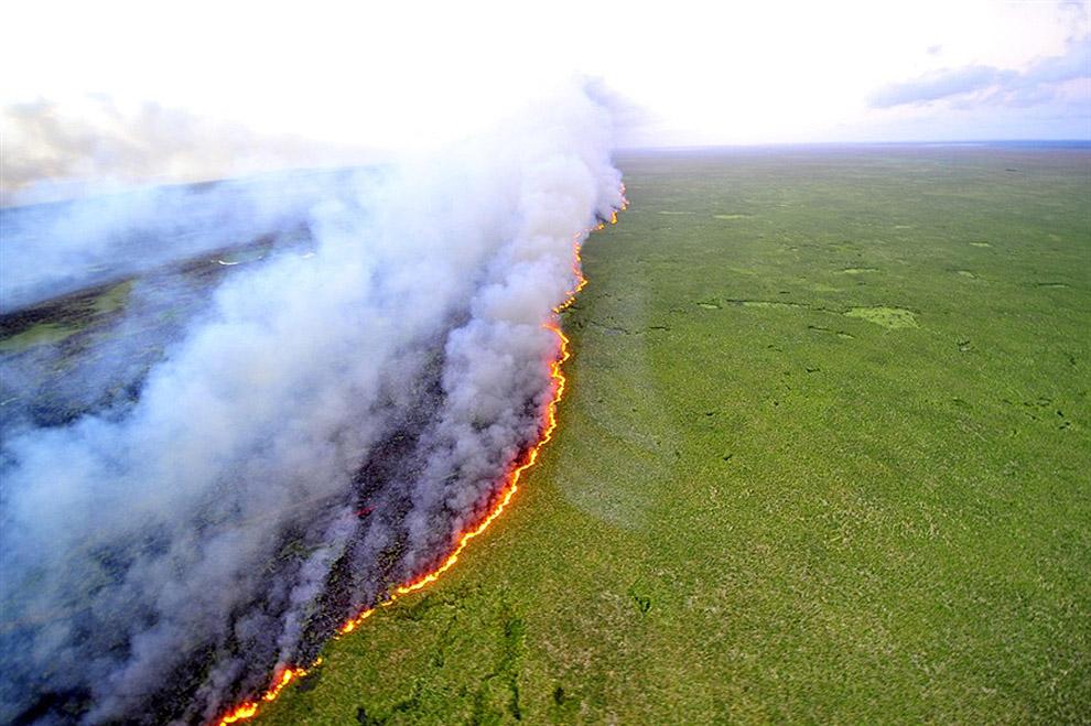 ცეცხლის ხაზები ბრაზილიაში