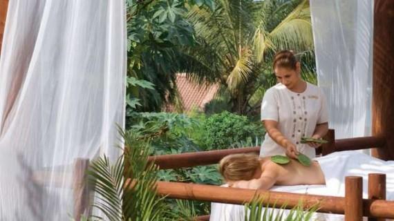 cactus-massage-570x320