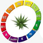 Vitamines Aloe vera bio