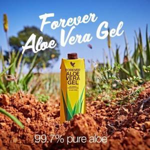 aloe vera gel, aloe vera buvable, aloe forever living boire, acheter aloe forever living craponne, vdi aloe forever living