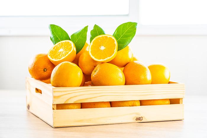 fruits automne orange