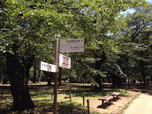 大宮公園(道案内の看板)