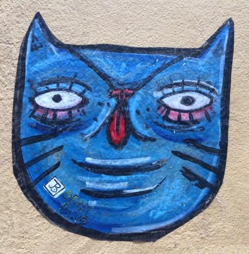 Porto, Portugal: Blue cat