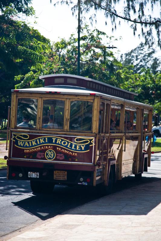 Oahu car rental vs. Waikiki Trolley vs. The Bus in Waikiki can be a tough choice.