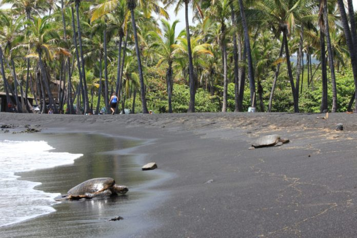 Colored Sand Beaches - Punaluu Beach