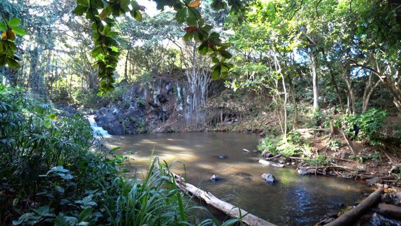 Kapena Falls pool.