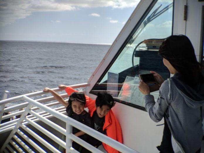 Oahu whale watching