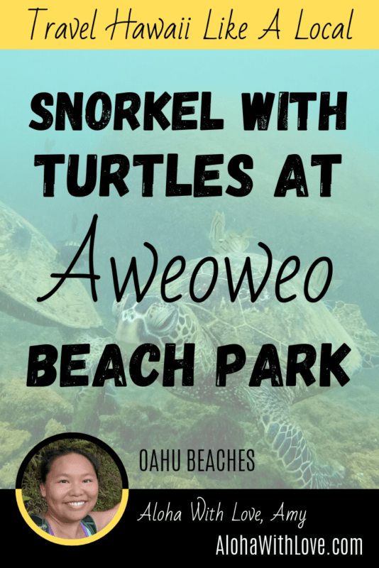 Aweoweo Beach Park Is A Hidden Gem For Snorkeling With Turtles