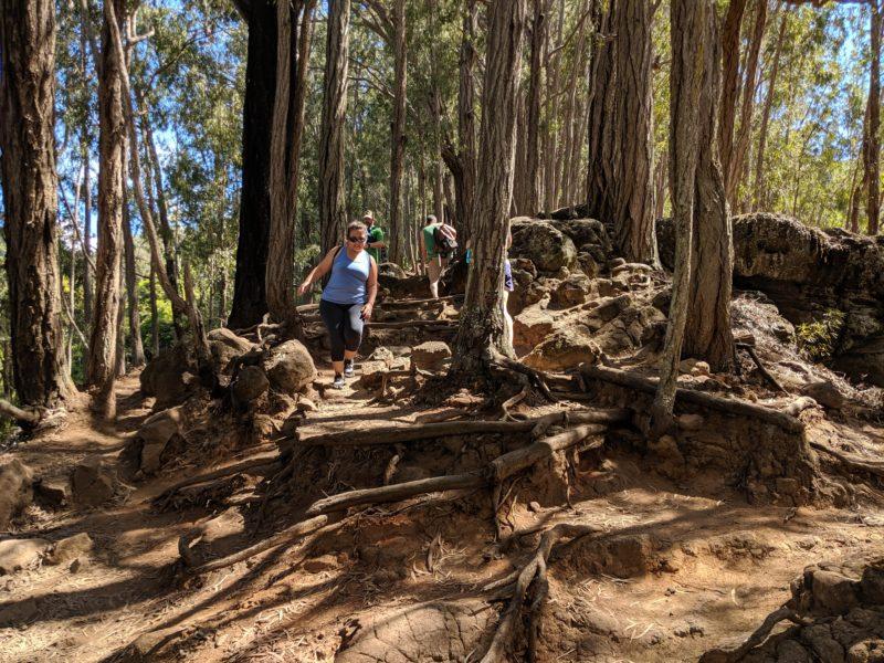 Hiking downhill on Maunalaha Trail.
