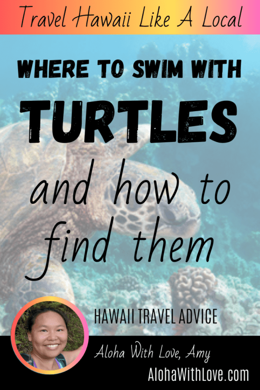 Pinterest Pin: Where To Swim With Turtles In Hawaii And How To Find Them