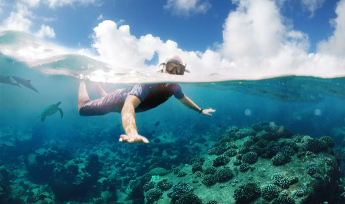 Snorkeling with a snorkel tour with clear and flat waters.