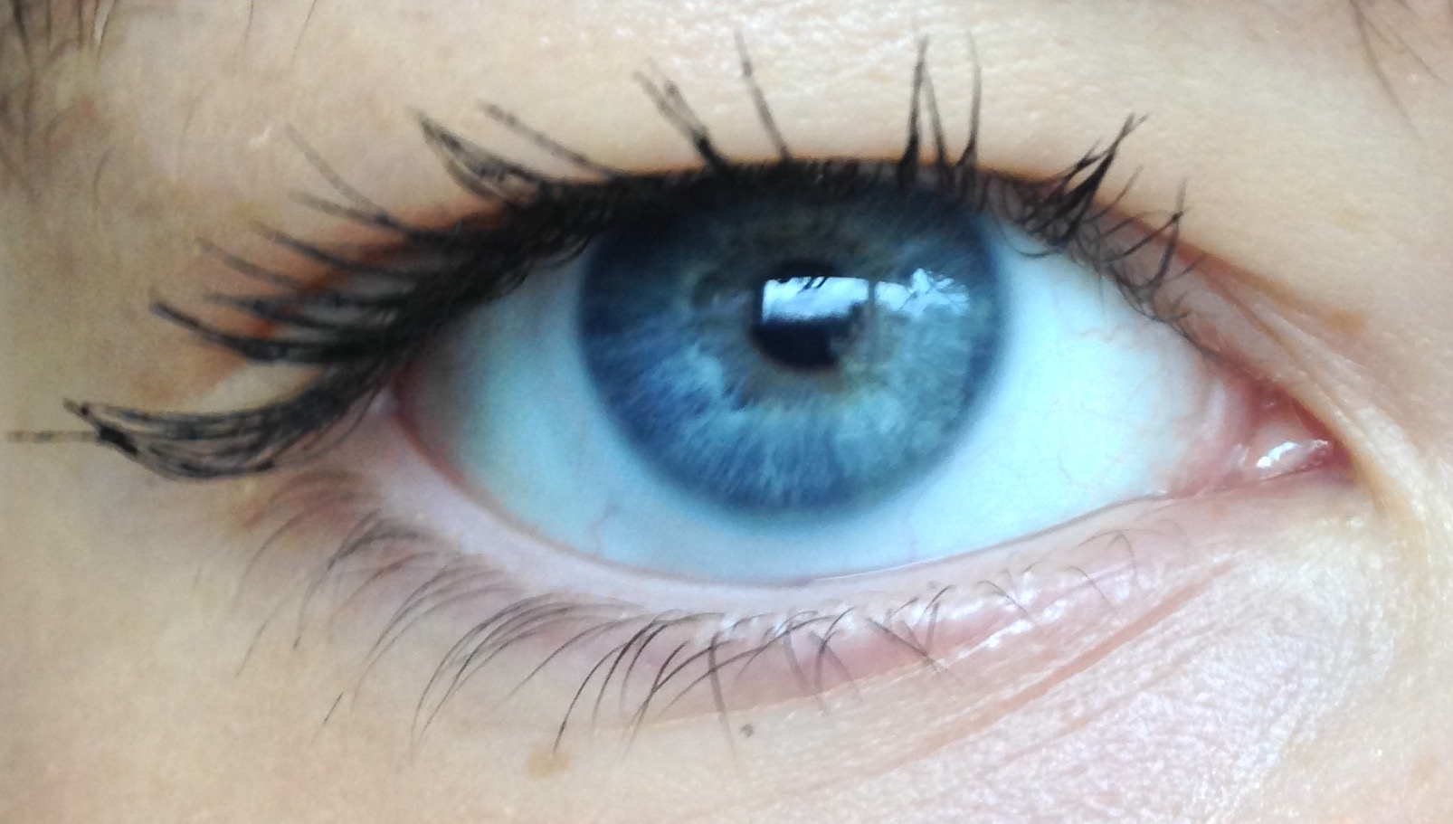 Figuring Out My Parents Eye Color Alleles