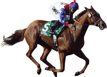 Photo Source - horsehats.com