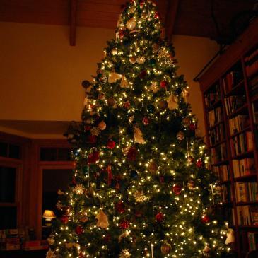 9 Ways to Enjoy Christmas with Family