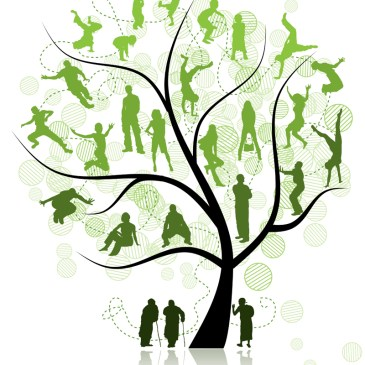 5 Questions to Consider when Exploring other Researchers Family Trees