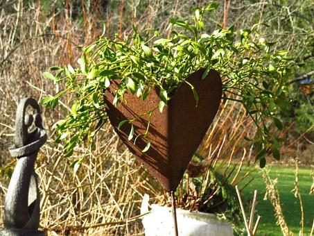 History of Kissing Under the Mistletoe