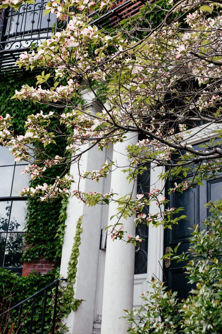 Boston in the Spring via A Lo Profile's Boston Travel Guide