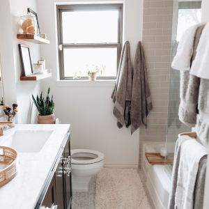 Hall Bathroom Reveal