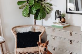 Sharing our guest bedroom reveal including all the details on our guest bedroom furniture & decor + links to shop everything.