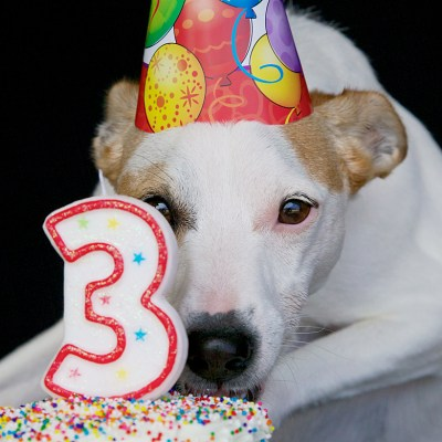 Happy Birthday, Dulce!