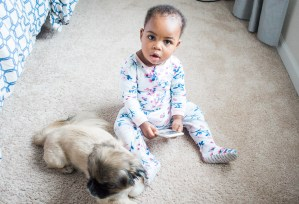a lovely mommy blog