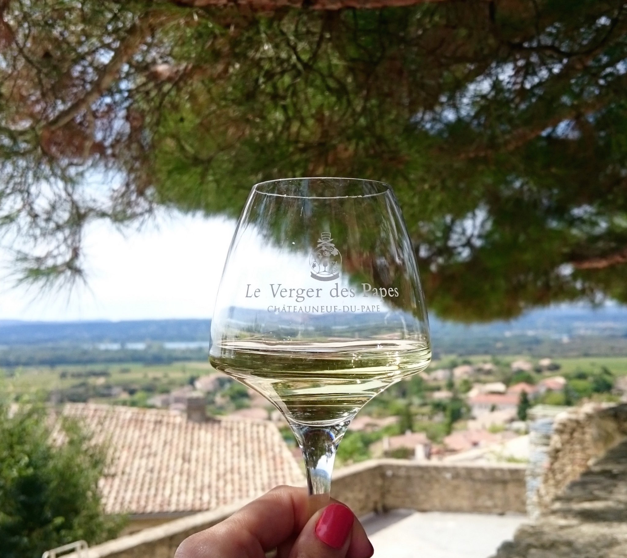 a-lovely-planet-chateauneuf-du-pape-le-verger