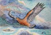 13-01-16 Drakenlief, Steenarend