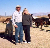 alpaca ranching in Nevada, Paul and Sands